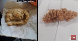 KFC Accused Of Including A Fried Rat In Chicken Tender Order