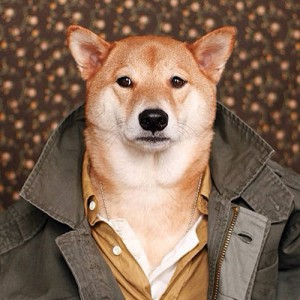 'Menswear Dog:' Bodhi Is One Cute And Incredibly Stylish Shiba Inu