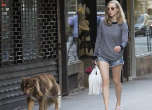 Amanda Seyfried Walks Dog Finn In NYC