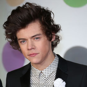Harry Styles Dating Kimberly Stewart, Rod Stewart's Daughter