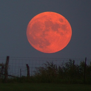 Harvest Moon Was In Full Bloom Yesterday, Last Full Moon Before Autumnal Equinox