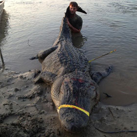 Mississippi Hunters Catch A Record Breaking 727-Pound Alligator