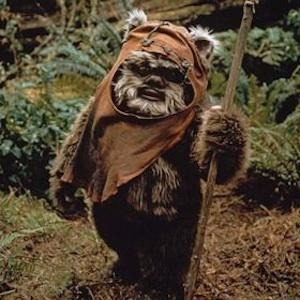 'Star Wars: Episode VII' News: Film Gets Official Release Date