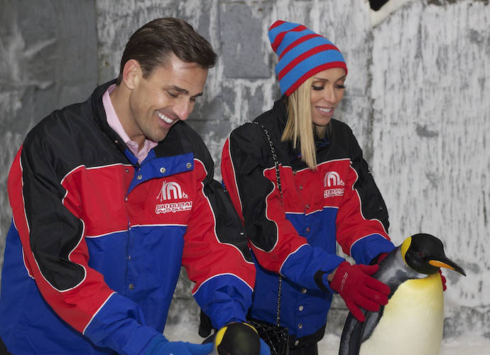 Giuliana And Bill Rancic Play With Penguins At The Mall Of The Emirates