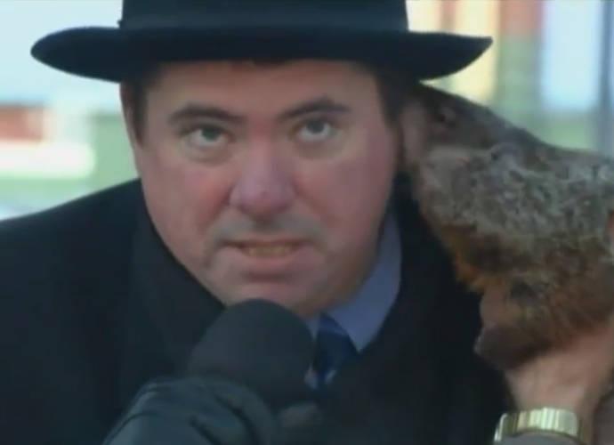 Jimmy The Groundhog Bites Down On Mayor During Groundhog Day 2015 Celebrations