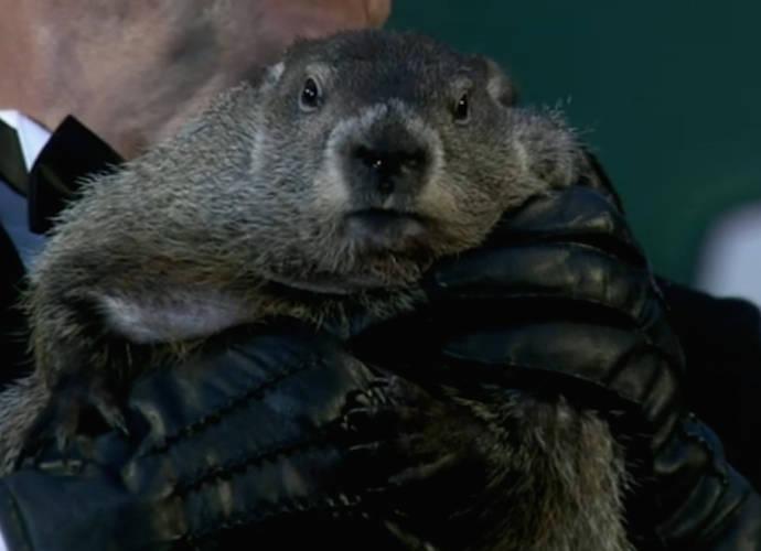 Police Issue Arrest Warrant For Penxsutawney Phil The Groundhog