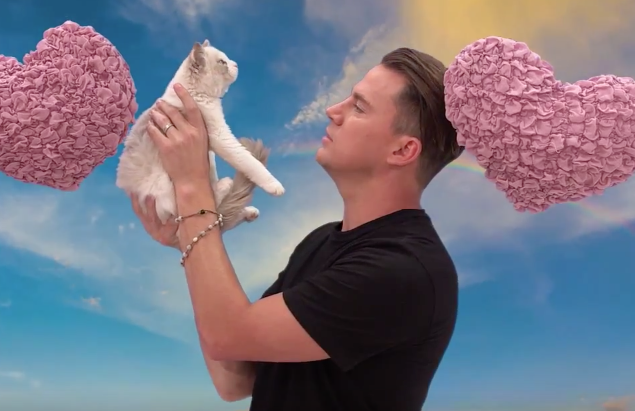 Channing Tatum Hilariously Ridicules A Kitten On 'Jimmy Kimmel Live!'