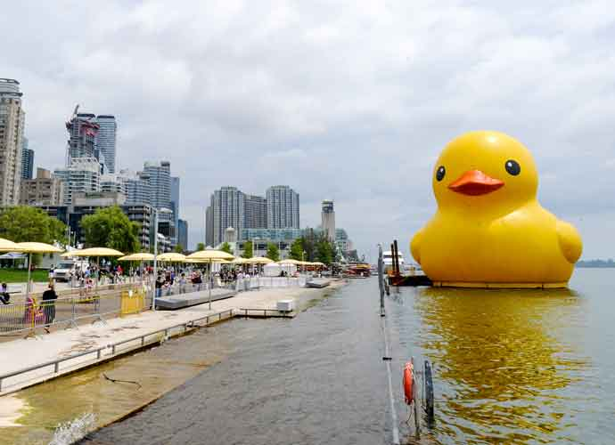 World Largest Rubber Duck Floats On To Celebrate Canada Day – Despite Legal Wrangling