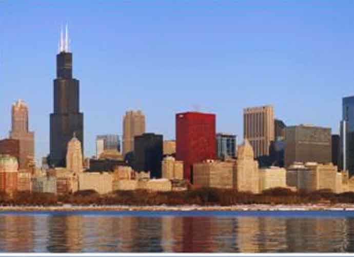 """Chicago Named New """"Rat Capital"""" Of United States, Surpassing New York City"""