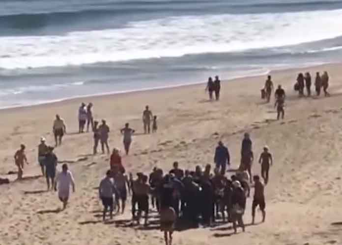 Arthur Medici, 26, Dies After Shark Attack In Cape Cod, First Such Incident In More Than 80 Years