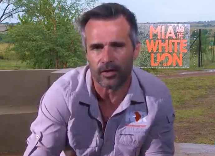"""VIDEO EXCLUSIVE: """"Lion Whisperer"""" Kevin Richardson On 'Mia And The White Lion'"""