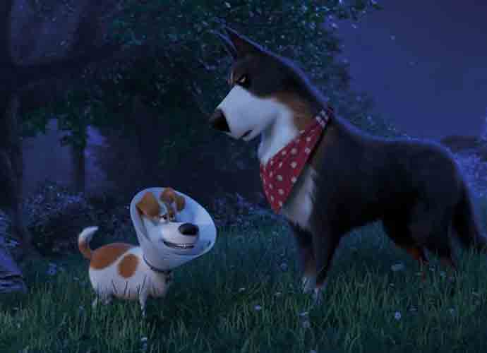 'The Secret Life of Pets 2' Blu-Ray Review: Not Up To 'Minions' Standard