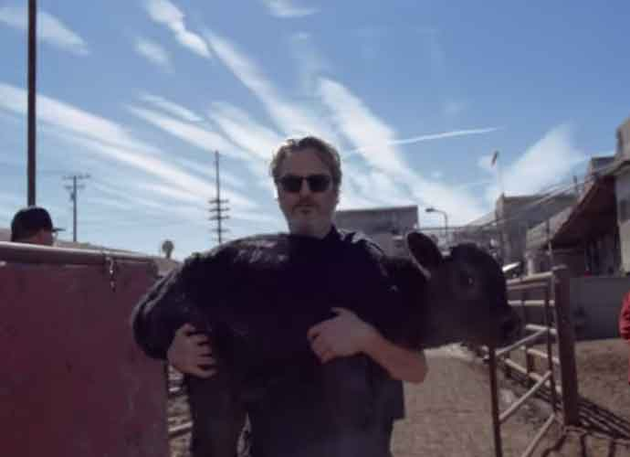 WATCH: Joaquin Phoenix Rescues A Cow & Its Calf From An L.A. Slaughterhouse