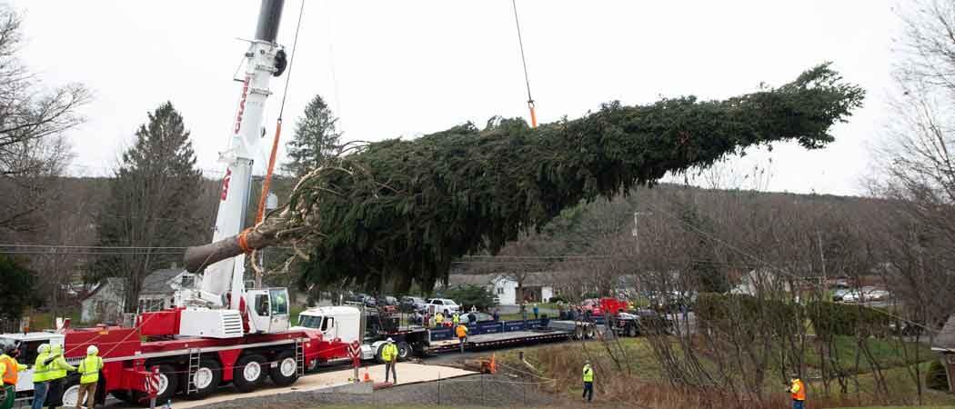 2020 Rockefeller Christmas Tree Panned By Social Media Critics