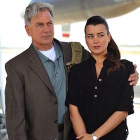 Cote De Pablo's 'NCIS' Exit Just 'Another Change,' Says Mark Harmon