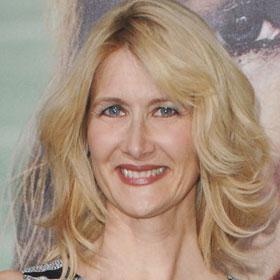 RECAP: Laura Dern Helms HBO's 'Enlightened'
