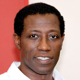 Wesley Snipes Makes Appeal To Keep His Freedom
