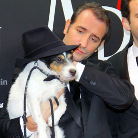 The Artist's Uggie The Dog Writes Memoir