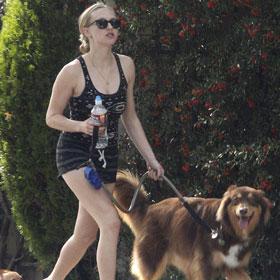 Amanda Seyfried Walks Her Dog In Hollywood