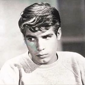 'My Three Sons' Star Don Grady Dies At 68